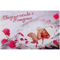 Книга-обложка свидетельство о рождении цветы